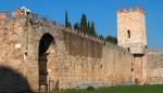 Pisa mura imagecredits Georges Jansoone CC BY-SA 3.0