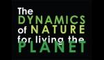 La dinamica della natura Triennale imagecredits triennale.it