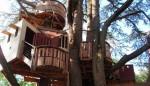 Tree house Château de Langeais imagecredits ThomasPusch CC BY-SA 3.0