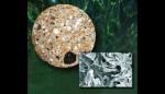 Sezione di cementizio da Baia e nel dettaglio al microscopio elettronico cristalli di al-tobermorite imagecredits UC Berkeley lbl.gov