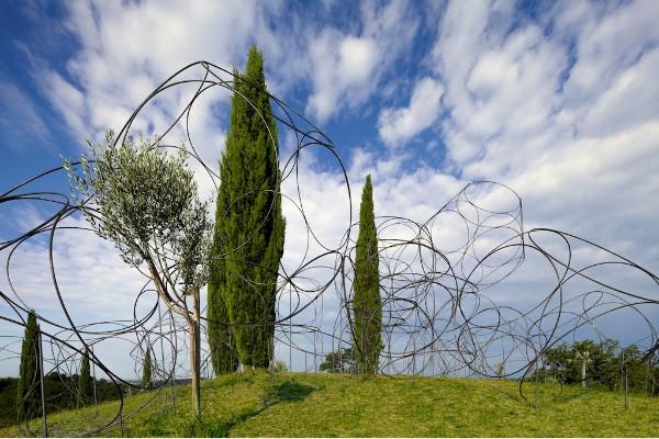 Vigne Museum imagecredits © foto Luigi Vitale