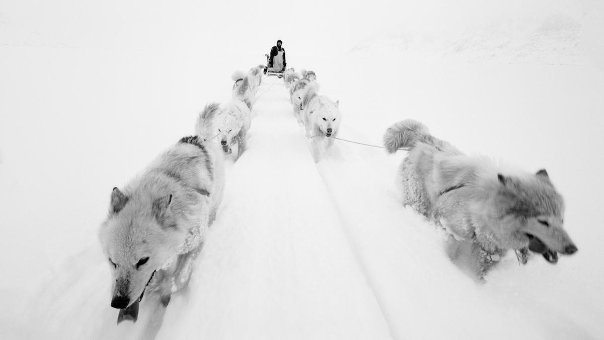 Paolo Solari Bozzi Sermilik Fjord Groenlandia 2016 courtesy triennale.org