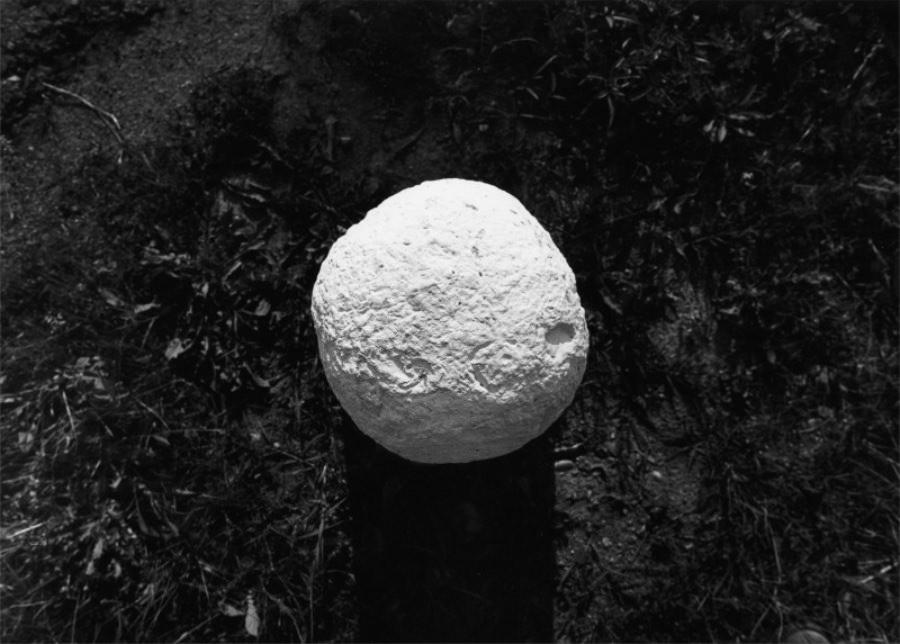Presenze scultoree CASAC imagecredits Mario Cresci courtesy csacparma.it